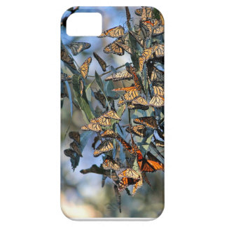 Monarch Cluster iPhone 5 Case