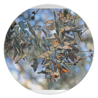 Monarch Cluster Plate