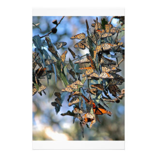 Monarch Cluster Stationery
