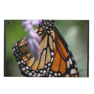 Monarch Danaus Plexippus Powis iPad Air 2 Case