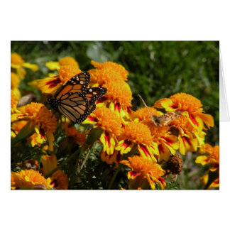 Monarch in the marigolds greeting card