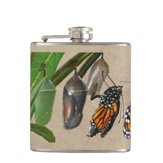 MONARCH LIFE CYCLE FLASKS
