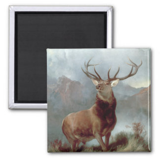 Monarch of the Glen, 1851 Square Magnet