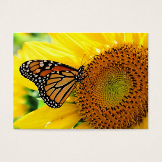 Monarch on a Sunflower ,Profile card