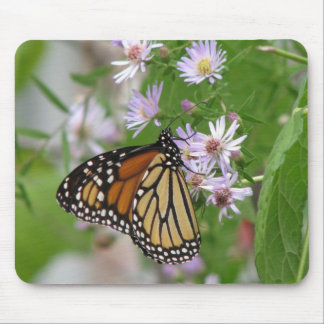 Monarch on Asters Mousepad