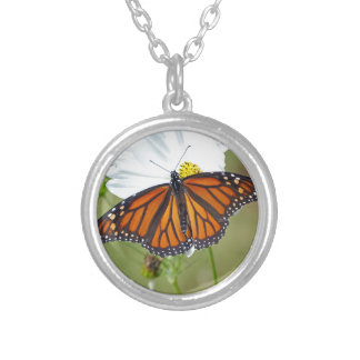 Monarch on Cosmos Silver Plated Necklace
