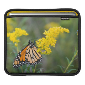 Monarch on Goldenrod iPad Sleeve