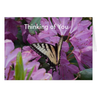 Monarch on Rhododendron Greeting Card