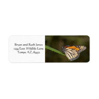 Monarch perched on a leaf return address label