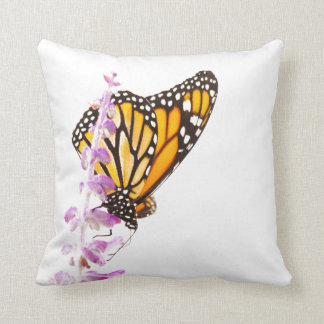 Monarch perched on lavender cushion