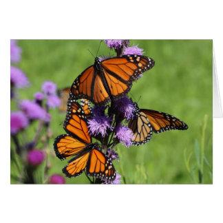 Monarch Trio Card