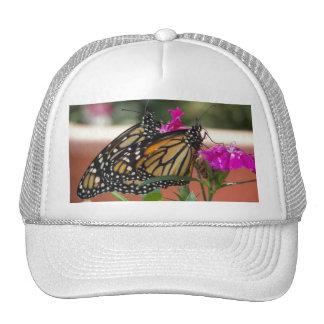 Monarch Twins #1-hat Cap
