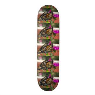 Monarch Twins #1-skateboard