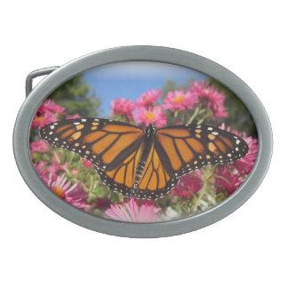Monarch Wings Oval Belt Buckle