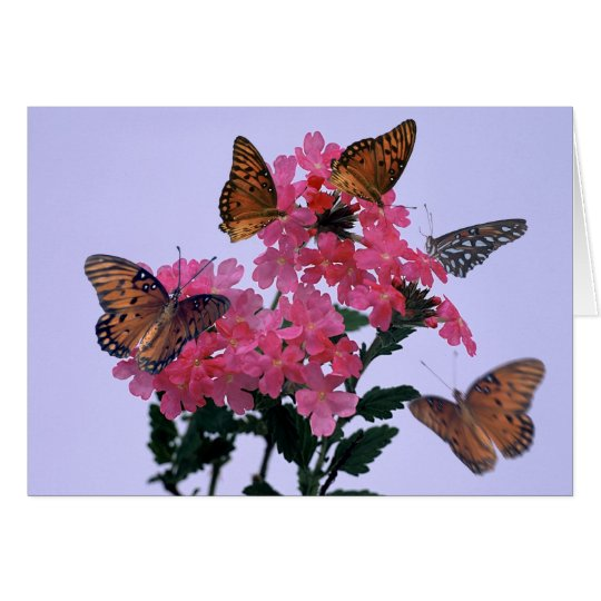 Monarchs and Pink Penta Card