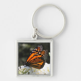 MONARCHS BEAUTY Silver-Colored SQUARE KEY RING