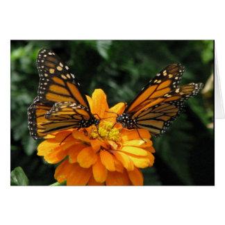 Monarchs Card