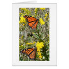 Monarchs on Goldenrod Card