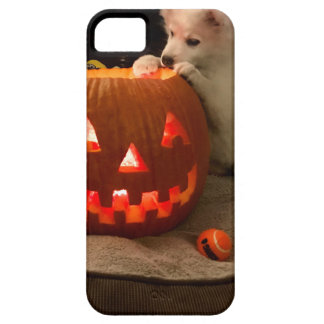 MONA'S PUMPKIN CASE FOR THE iPhone 5