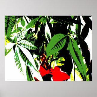 Money Plant Print