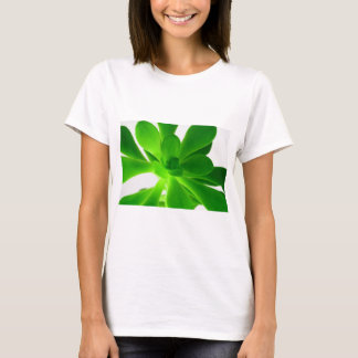 Money tree shirt