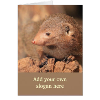 Mongoose Photo to Customize Yourself Card