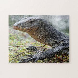 Monitor Lizard Puzzle