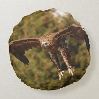 Monk Vulture monk vulture/photo Jean Louis Glineur Round Cushion