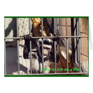 Monkey Bars Greeting Card
