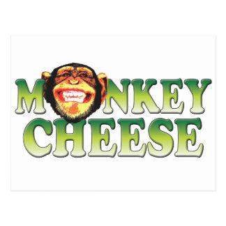 Monkey Cheese Postcard