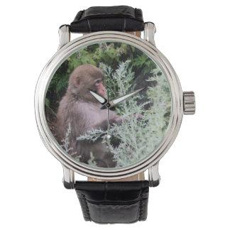 Monkey Daily Pick Wrist Watch