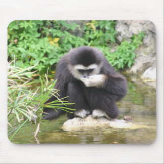 Monkey drinking mouse pad