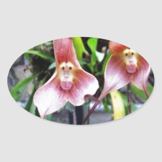 MONKEY Flower: Nature Miracles Wonders Oval Sticker