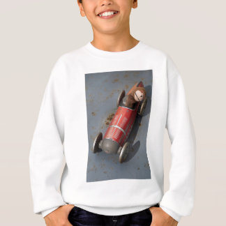 Monkey in a toy car sweatshirt