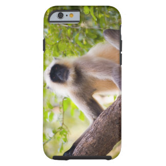 Monkey in jungle of Ranthambore National Park Tough iPhone 6 Case