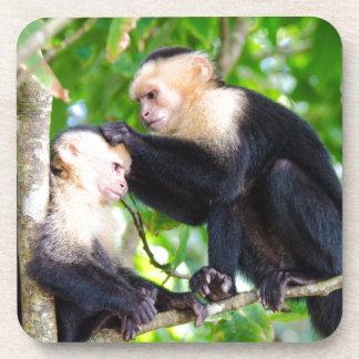 Monkey Love Coaster