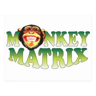 Monkey Matrix Postcard