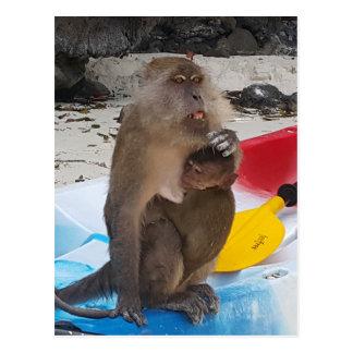 Monkey Mother & Baby Postcard