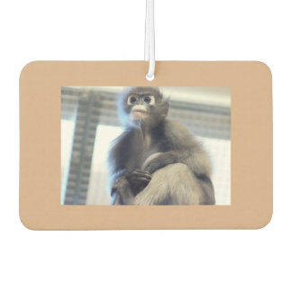 Monkey Photo Car Air Freshener