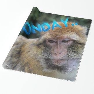 Monkey sad about monday