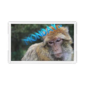Monkey sad about monday acrylic tray