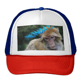 Monkey sad about monday cap