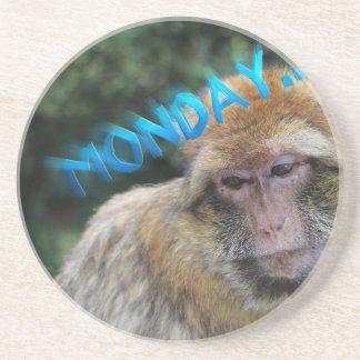 Monkey sad about monday coaster