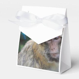 Monkey sad about monday party favour boxes