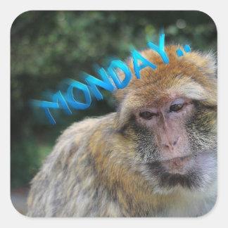 Monkey sad about monday square sticker