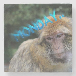 Monkey sad about monday stone coaster