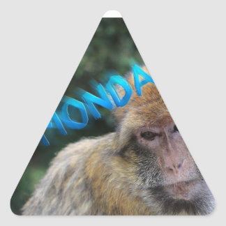 Monkey sad about monday triangle sticker