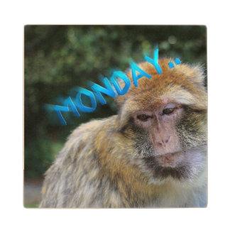 Monkey sad about monday wood coaster