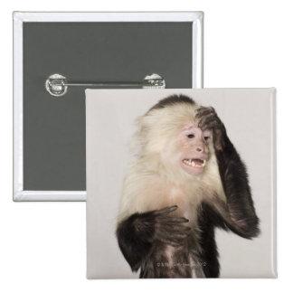 Monkey scratching itself 15 cm square badge
