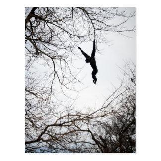 Monkey Swinging Postcard